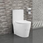 white-swiss-madison-one-piece-toilet